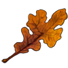 5491-post-oak-leaf.png