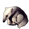 5533-gray-anteater-pup.png