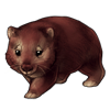 5614-brown-wombat.png