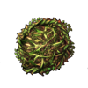 5706-shield-of-thorns.png