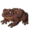 5766-peanut-chocolate-frog.png