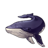 6109-indigo-humpback-whale.png