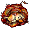 6203-autumn-cabbage-kid.png