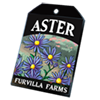 6225-aster-seed-packet.png