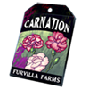 6226-carnation-seed-packet.png