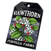 6230-hawthorn-seed-packet.png