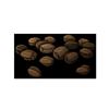 6243-larkspur-seeds.png