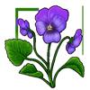 6260-violet.png