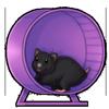 6371-purple-wheel-wheelster.png