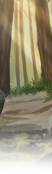 4108-forest-rays-vista.png