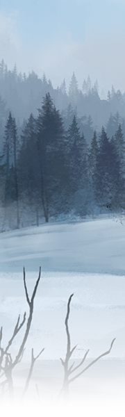 4111-frosty-forest-vista.png