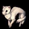 456-winter-ferret.png