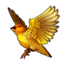 2113-orange-fronted-yellow-finch.png