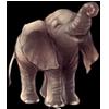 2248-gray-enefant.png