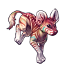 3697-striped-african-wild-dog.png