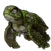 3924-ancient-sea-tortle.png