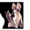 4773-brindle-bat-dog.png