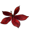 5490-buckeye-leaf.png