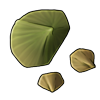 6017-turtle-shell-fragment.png