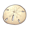 6106-the-perfect-sand-dollar.png