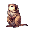 6649-double-quokka.png