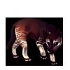 6733-okapi-ocelot.png