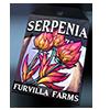 6786-serpenia-seed-packet.png