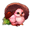 6882-pretty-pink-basket-chick.png