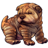 6895-brown-shar-pup.png