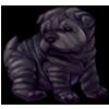 6896-black-shar-pup.png