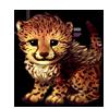 7035-spotty-cheetah-cub.png