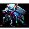 7056-iridescent-skool-beetle.png