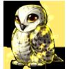 plush_owl_snowy_magic.png